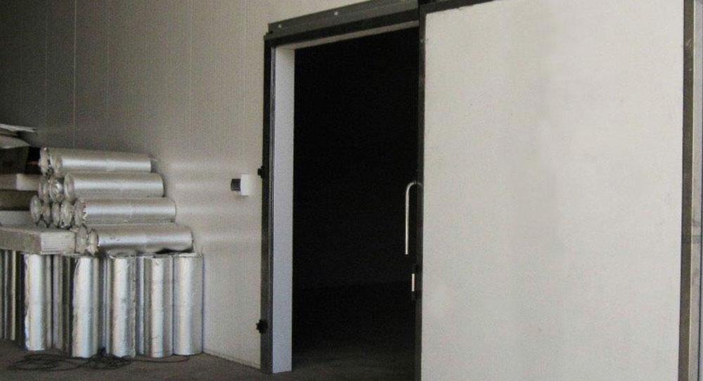 Puerta Frigorífica